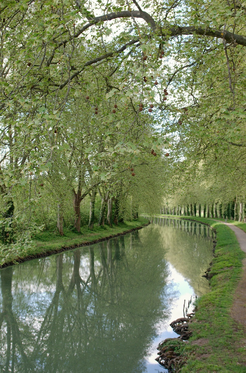 Le canal Garonne quelque part après Golfech