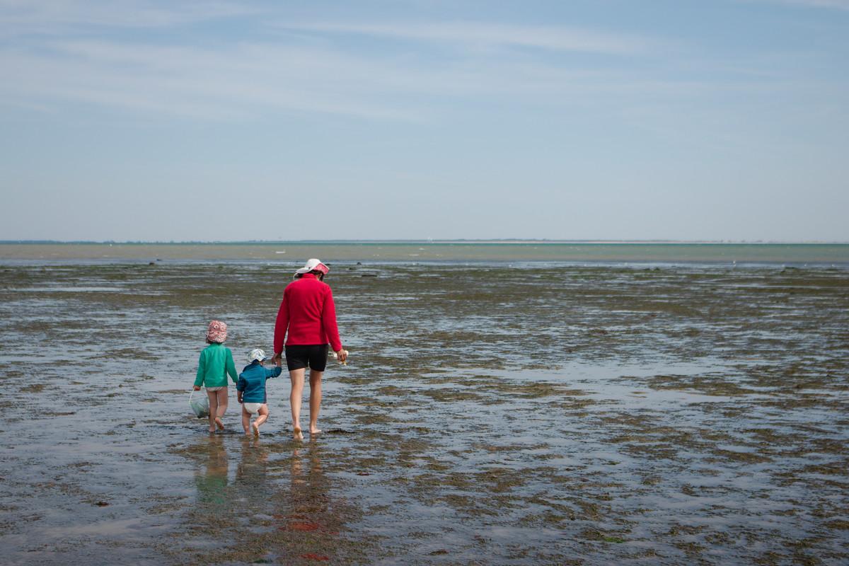 Sur une plage de l'île de Ré à marée basse