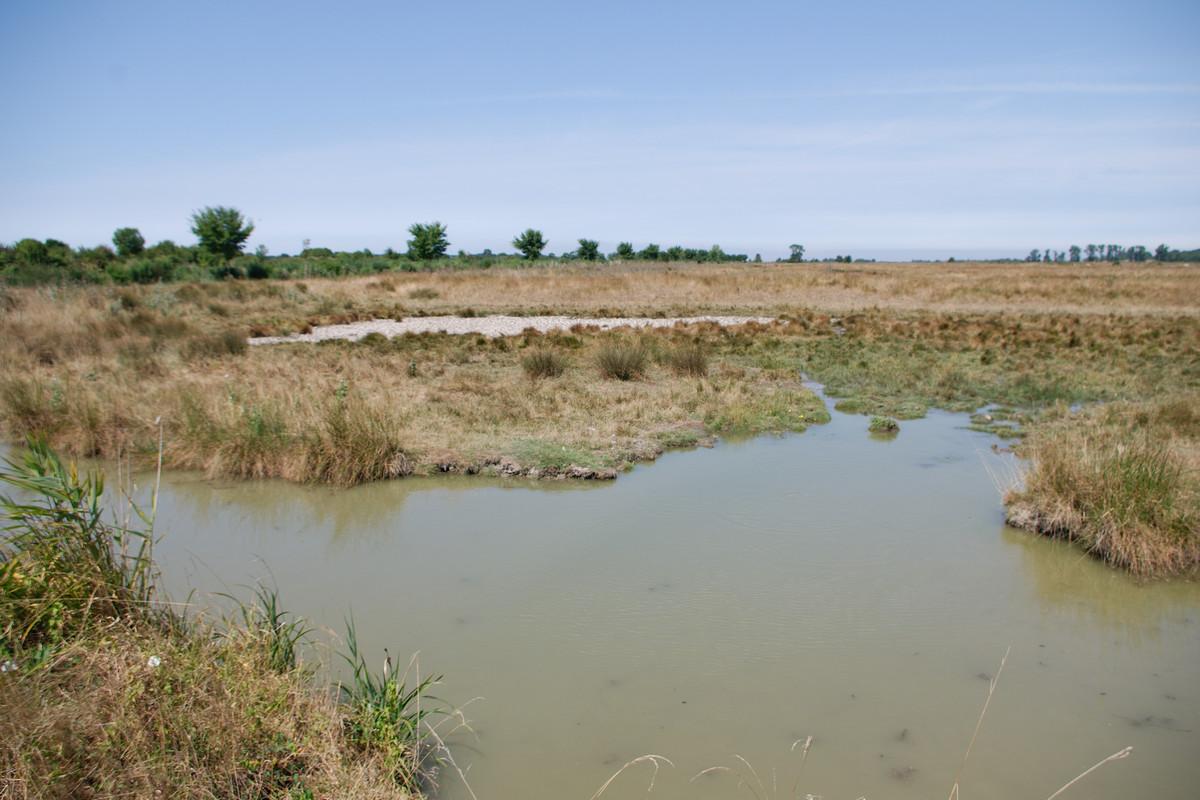 Les marais près de Marennes