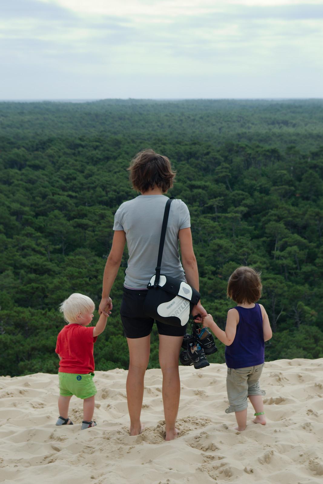 Depuis le haut de la dune du Pyla, on a une belle vue sur la forêt