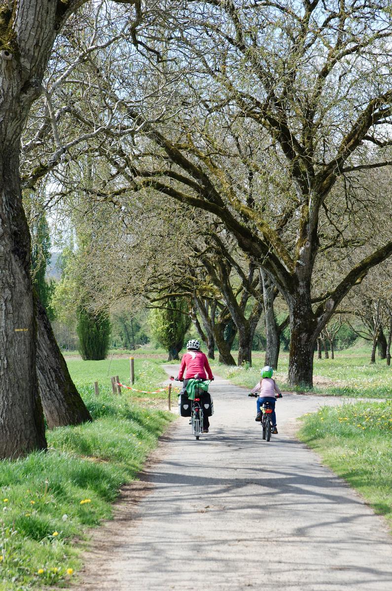 Sur la voie verte le long de la Dordogne